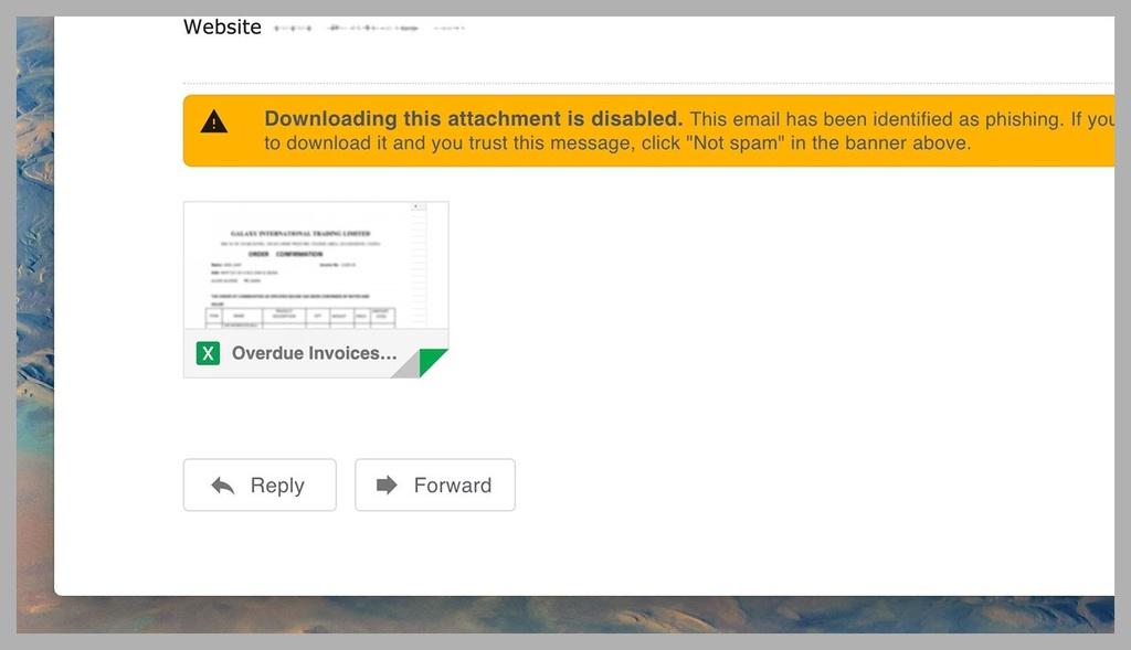 Cach de tranh bi hack, lua dao qua mang hinh anh 3 03_phishing.jpg