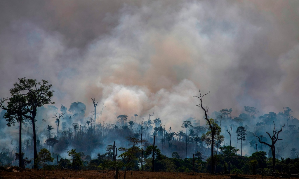 Tong thong Brazil goi nan pha rung Amazon la 'van hoa' hinh anh 2