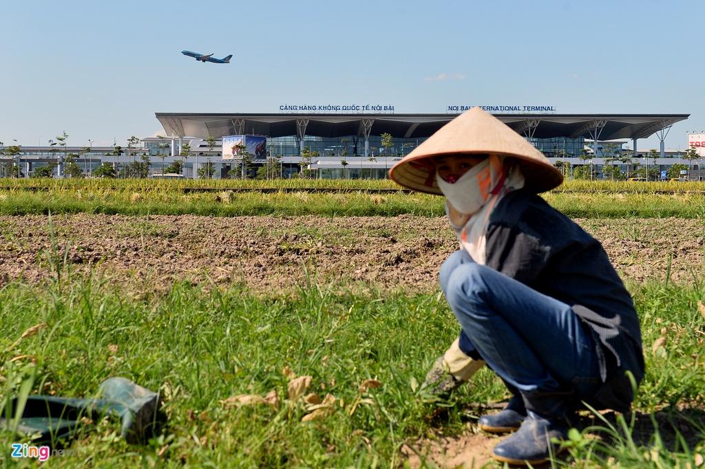 Ngoi lang nam trong quy hoach san bay Noi Bai mo rong hinh anh 10