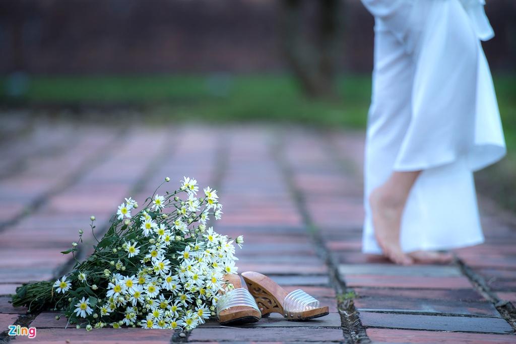 Cuc hoa mi no ro tu vuon ra pho hinh anh 12