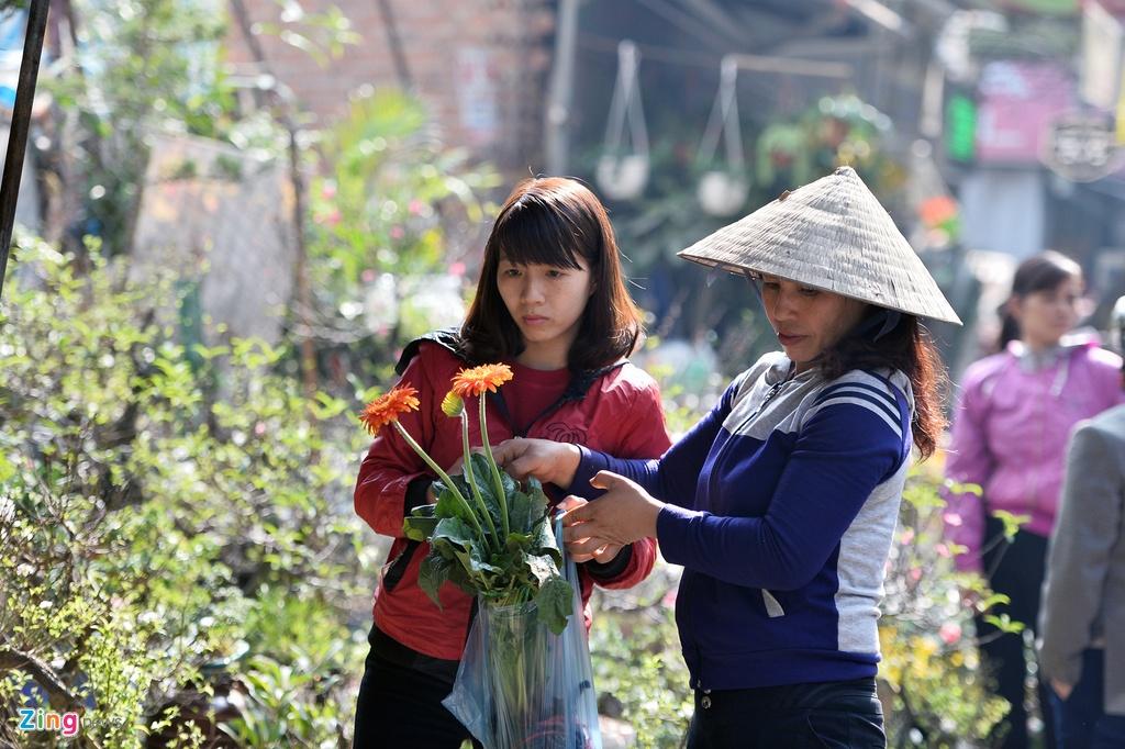 Ot Nhat, tulip Ha Lan o cho hoa, cay canh lon nhat Ha Noi hinh anh 10