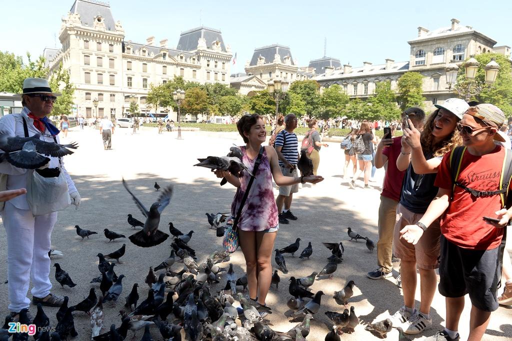 Nam lan duoi thap Eiffel, dua voi chim o nha tho Duc Ba Paris hinh anh 13