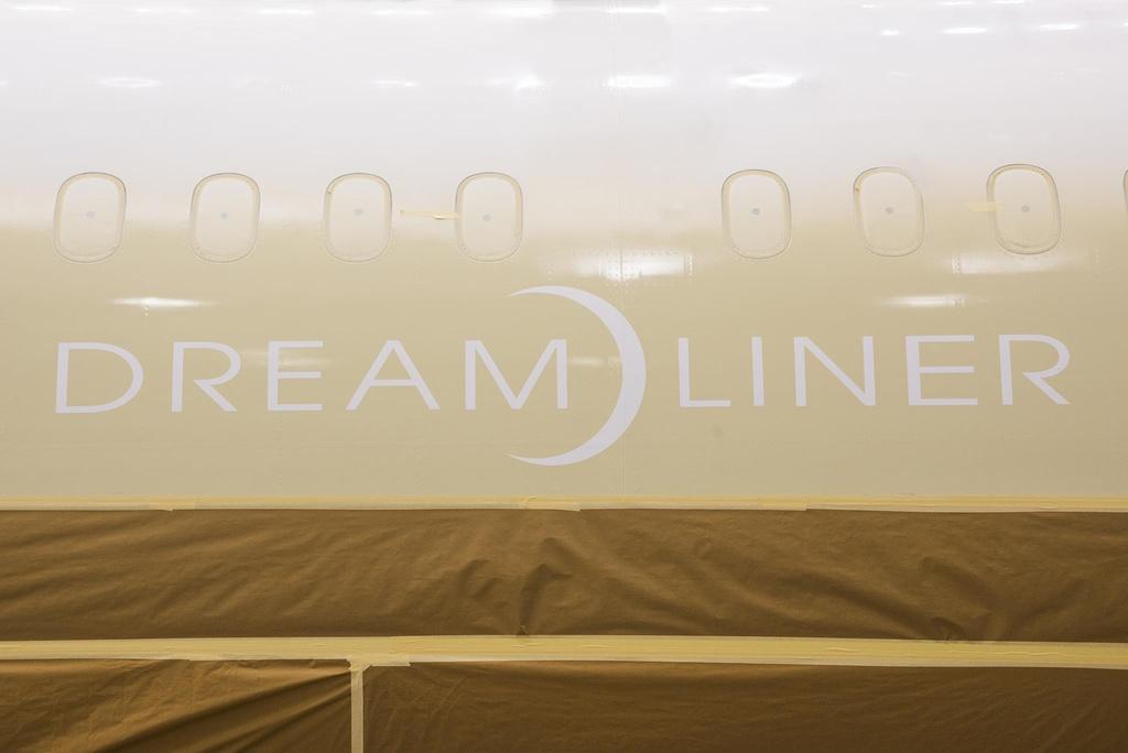 Canh phun son sieu may bay Boeing 787-10 di thue moi nhat cua Viet Nam hinh anh 4