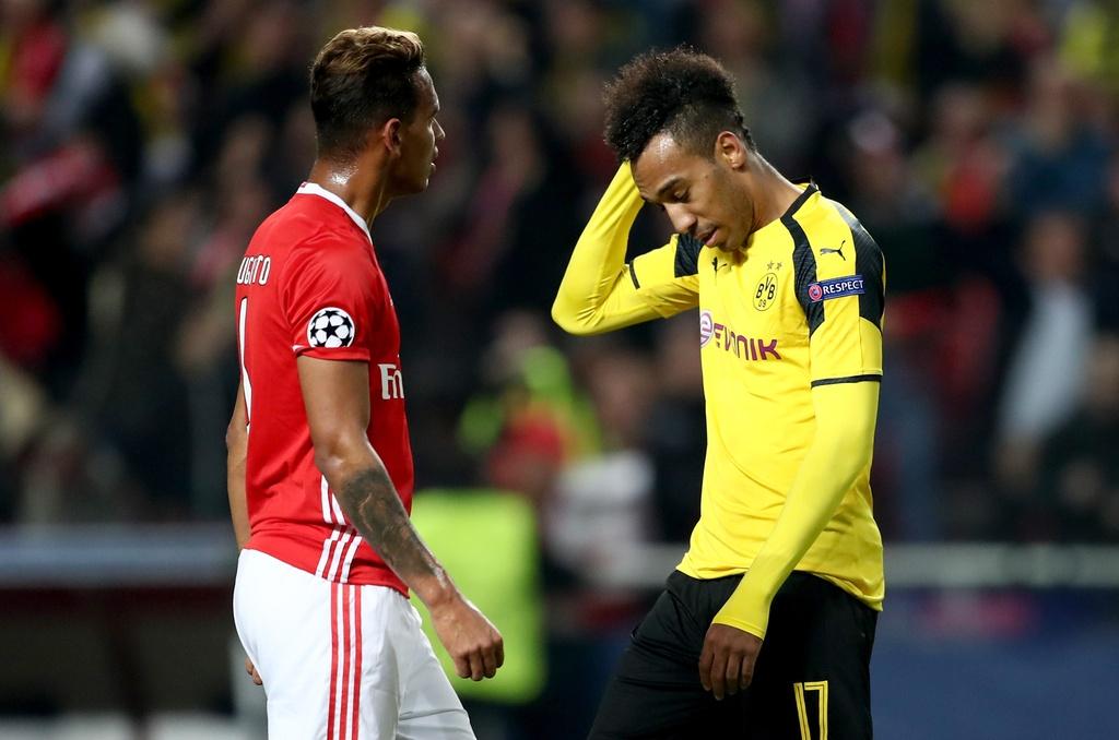 Tran Benfica vs Dortmund anh 2