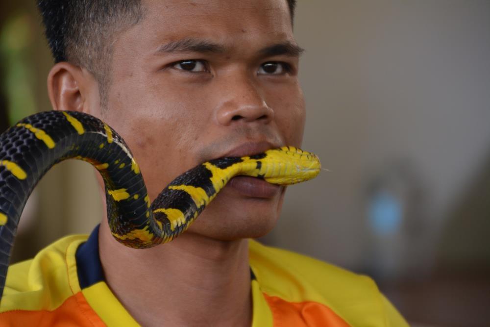 Ngoi lang ran doc o Thai Lan anh 8