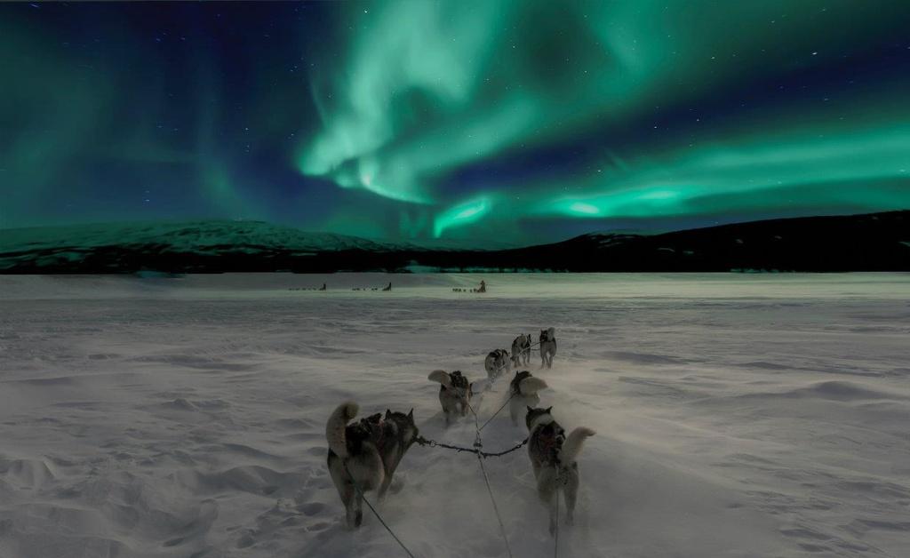 Thám hiểm Sơn Đoòng vào top các cuộc phiêu lưu vĩ đại thế giới - Ảnh 6