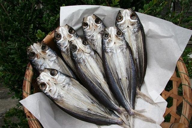 Cá khô lên men bốc mùi nhưng bổ dưỡng nức tiếng ở Nhật