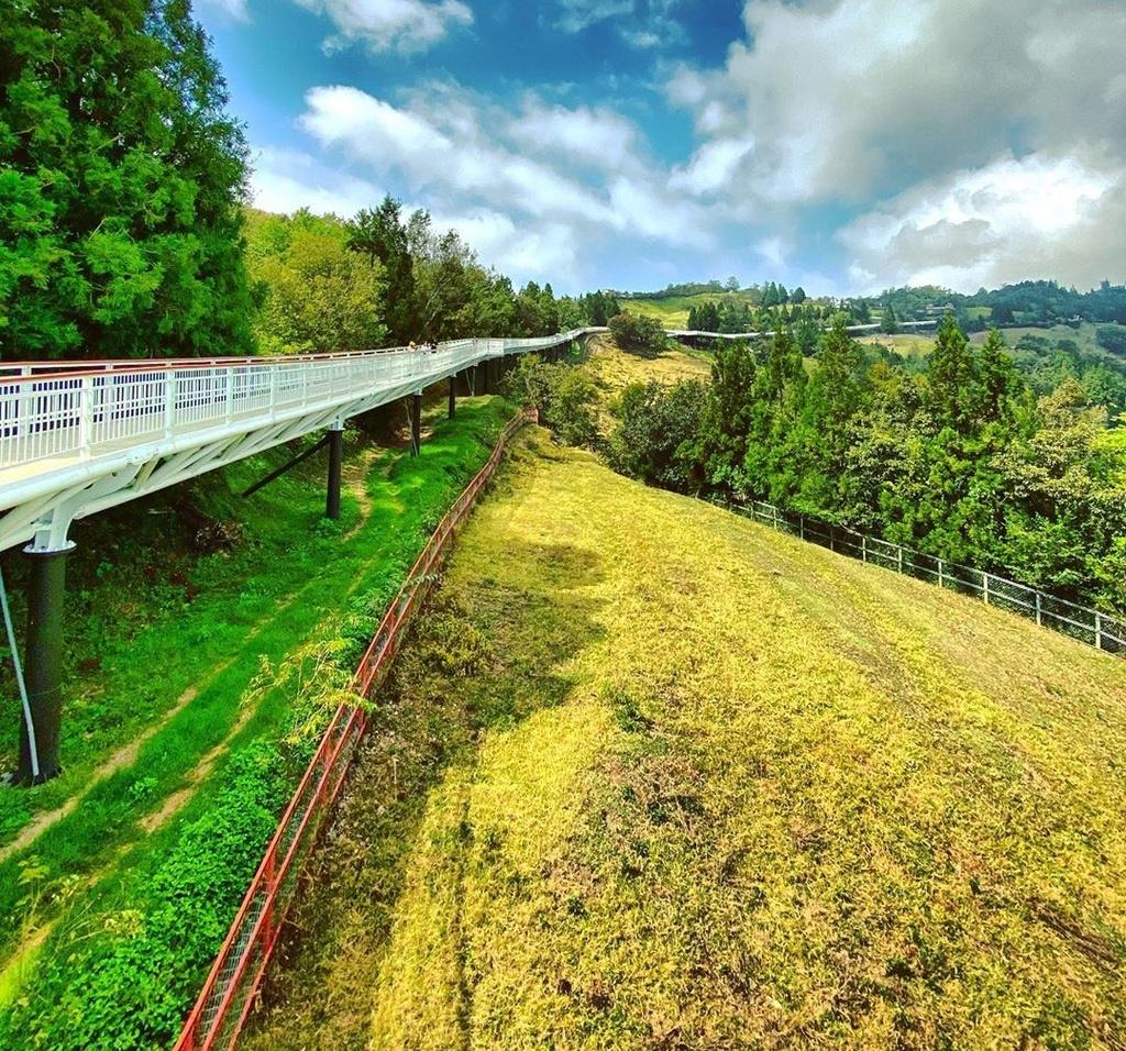 Nông trại cừu và 6 điểm ngắm lá vàng đẹp mê hồn gần Việt Nam