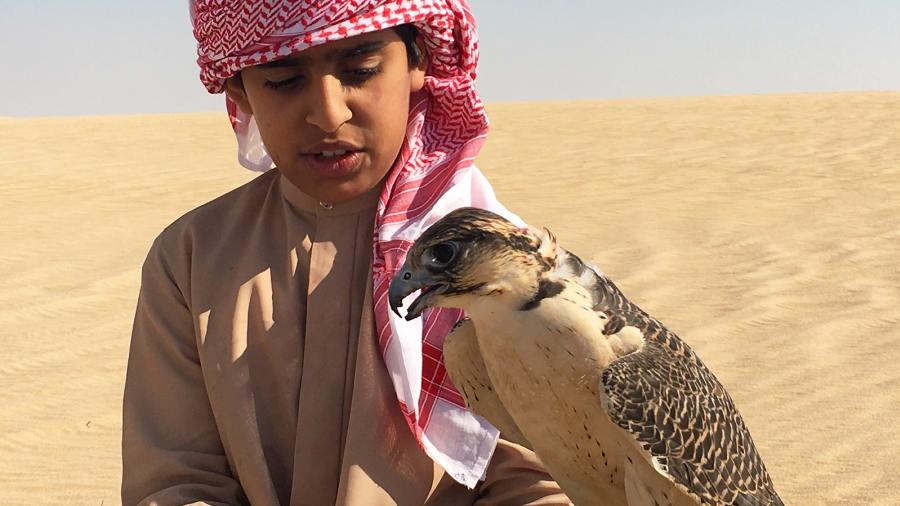 UAE anh 1