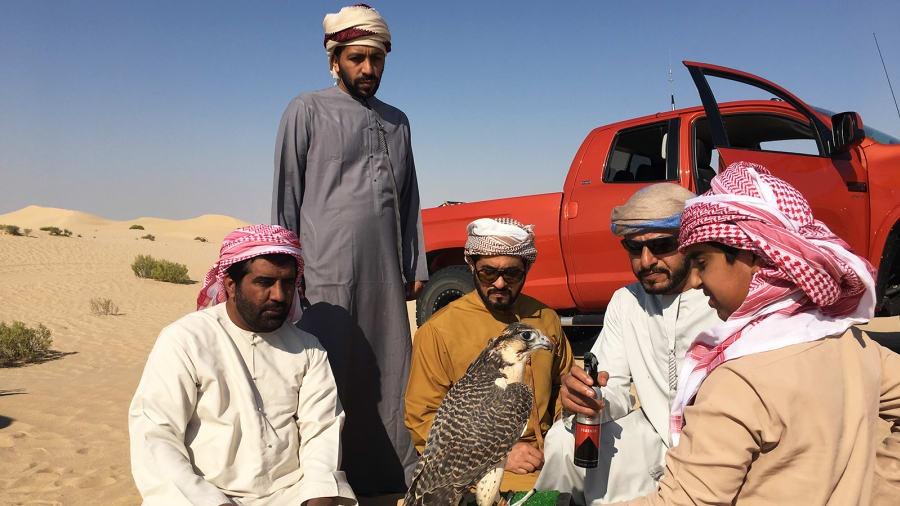 UAE anh 3
