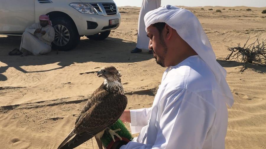 UAE anh 4