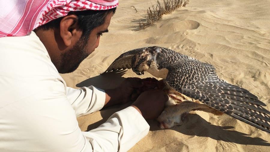 UAE anh 7