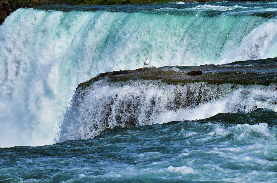 Thac Niagara khac la nhin tu hai phia My va Canada hinh anh 5