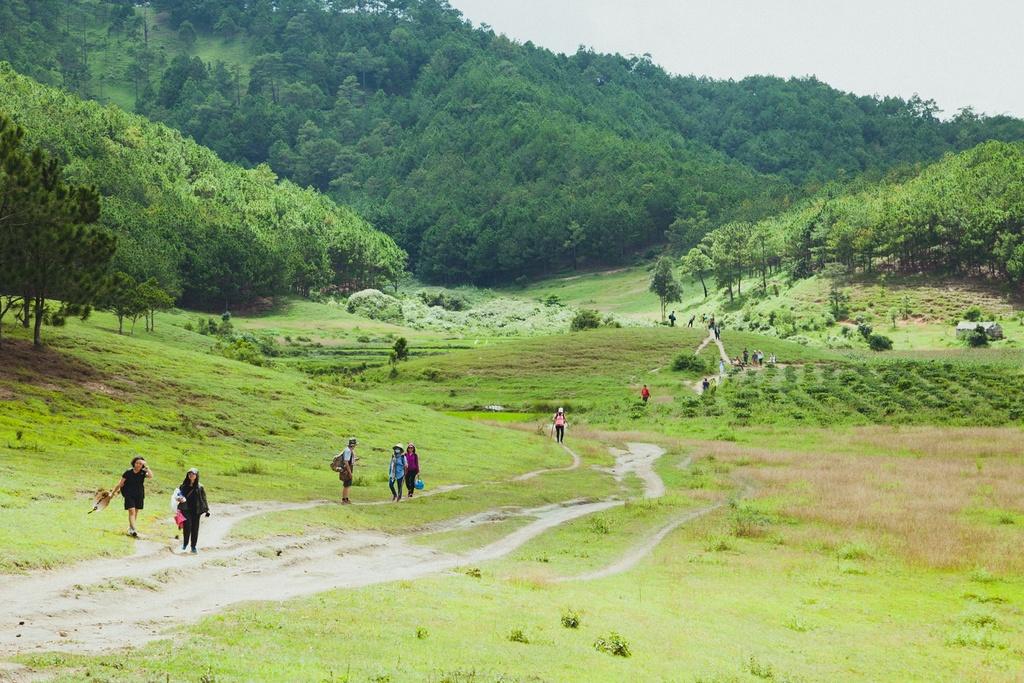 Ta Nang - Phan Dung: Cung duong trekking dep nhung day ray hiem nguy hinh anh 1