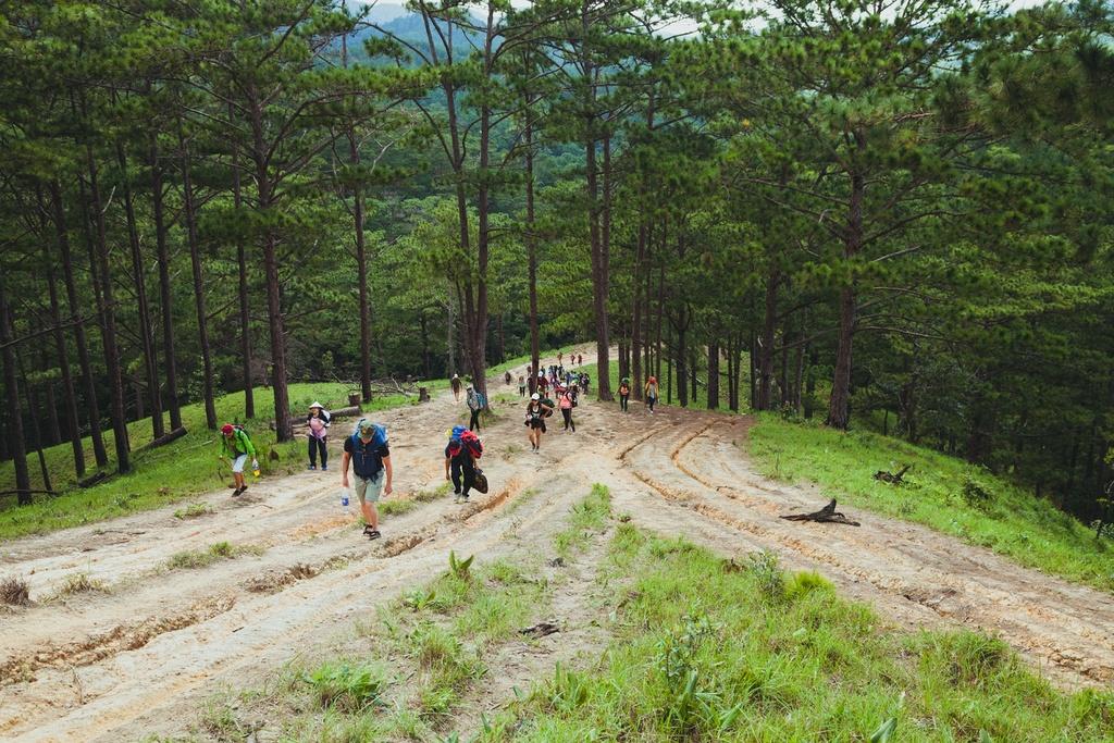 Ta Nang - Phan Dung: Cung duong trekking dep nhung day ray hiem nguy hinh anh 2