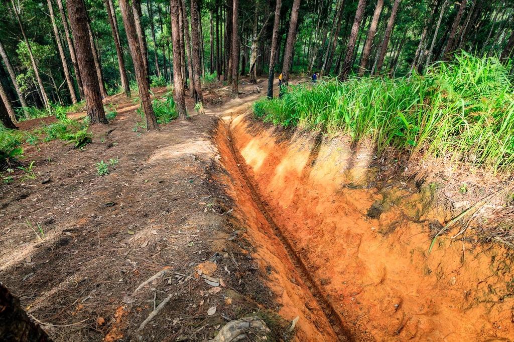 Ta Nang - Phan Dung: Cung duong trekking dep nhung day ray hiem nguy hinh anh 3