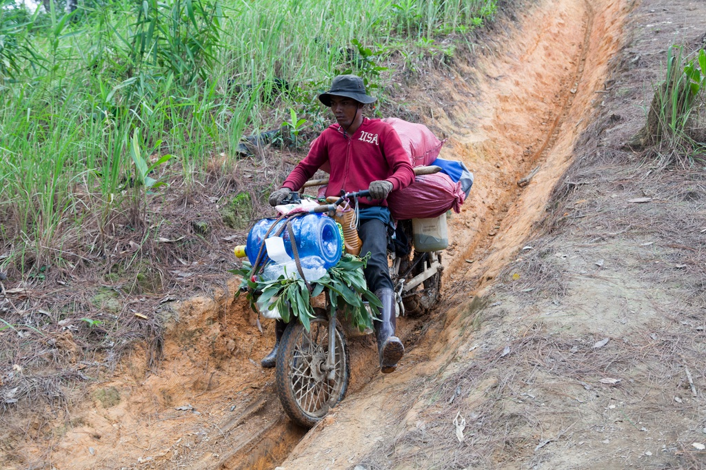 Ta Nang - Phan Dung: Cung duong trekking dep nhung day ray hiem nguy hinh anh 4