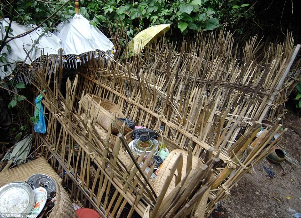 Tuc phoi thay nguoi chet trong long tre tren dao Bali hinh anh 6