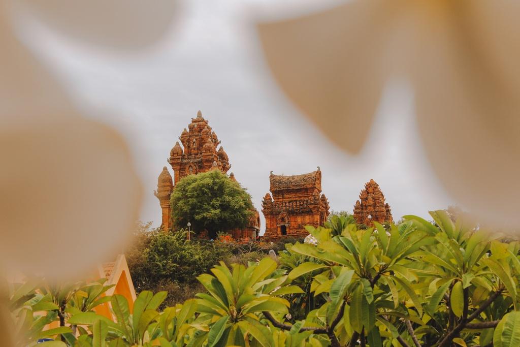 #MyTour: Nhan ai di Ninh Thuan gui ve mien thuong hinh anh 9