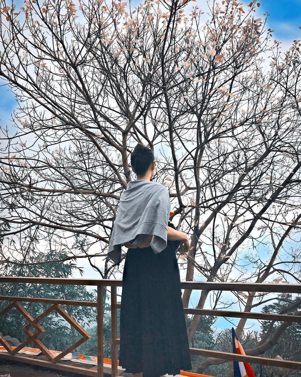 'Song Lung Khung Long' va cac noi dung vao la co anh dep o Quang Ninh hinh anh 1