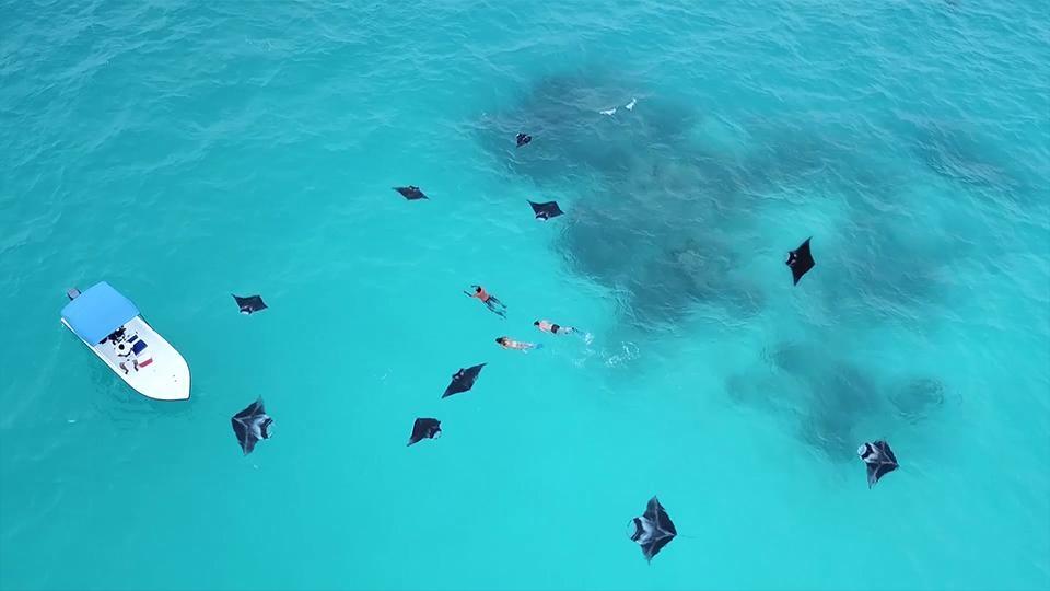 Thien duong duoi long dai duong o Maldives hinh anh 2