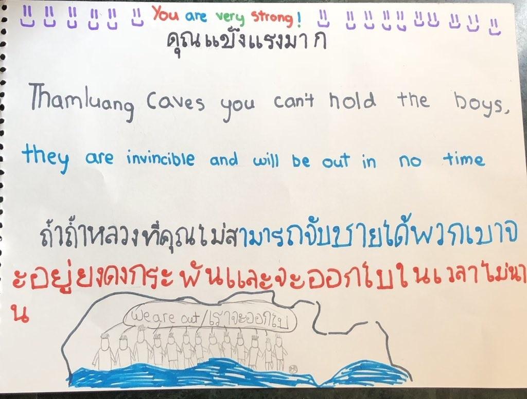 Dan mang chia se tranh voi, hai cau, kangaroo cung cuu doi bong Thai hinh anh 2