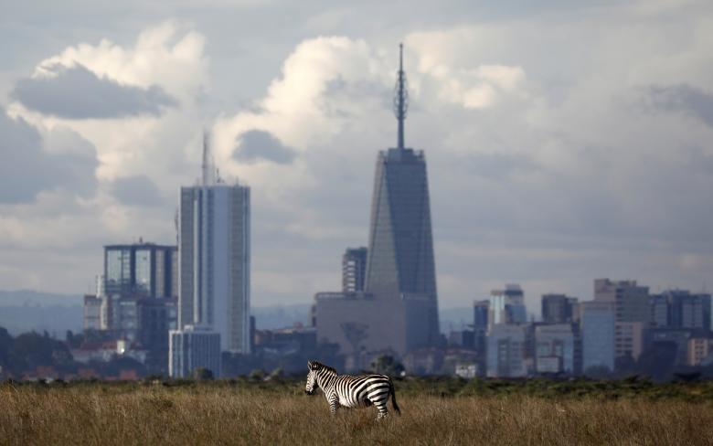 Nairobi - thu do duy nhat the gioi dong vat hoang da tu do di lai hinh anh 1
