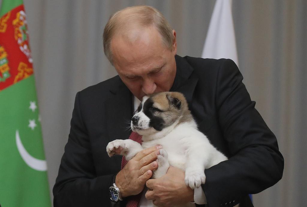 Tong thong Putin cung cun cung vao top anh tuan hinh anh 1