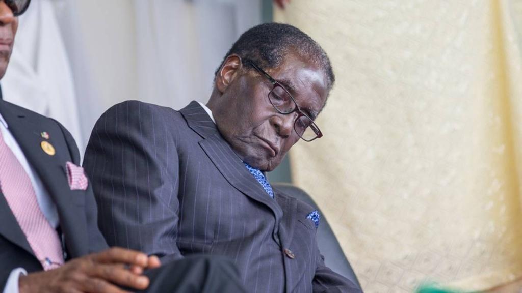 Nhung lan ngu gat cua tong thong Zimbabwe hinh anh 6