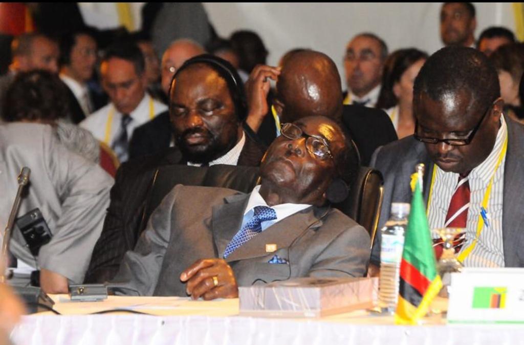 Nhung lan ngu gat cua tong thong Zimbabwe hinh anh 7