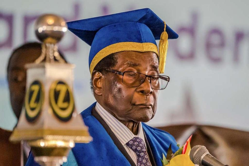Nhung lan ngu gat cua tong thong Zimbabwe hinh anh 8