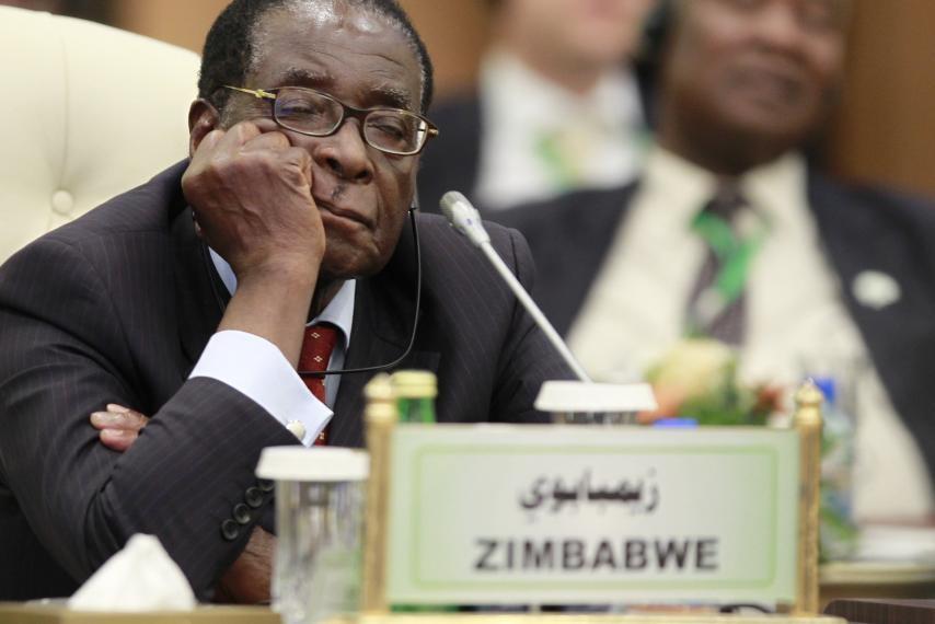 Nhung lan ngu gat cua tong thong Zimbabwe hinh anh 4