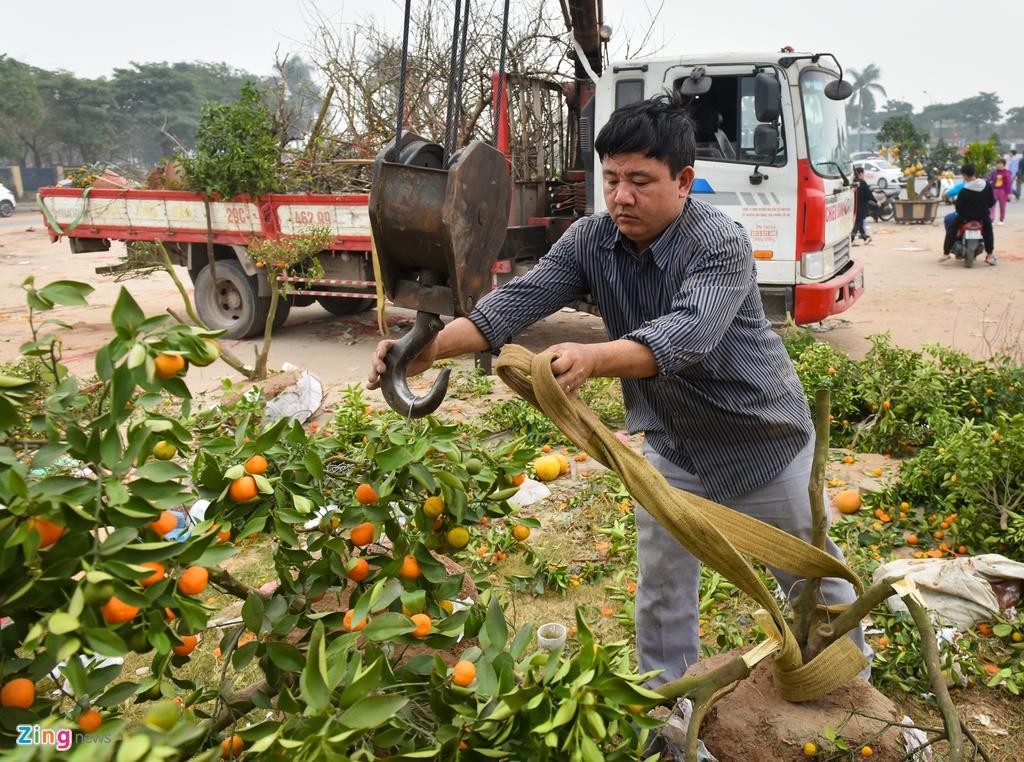 Tieu thuong Ha Noi cung dap nat hoa dao de tranh bi ep gia hinh anh 9