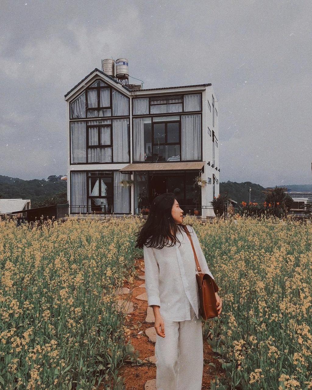 4 homestay phòng kính view núi rừng thơ mộng ở Đà Lạt