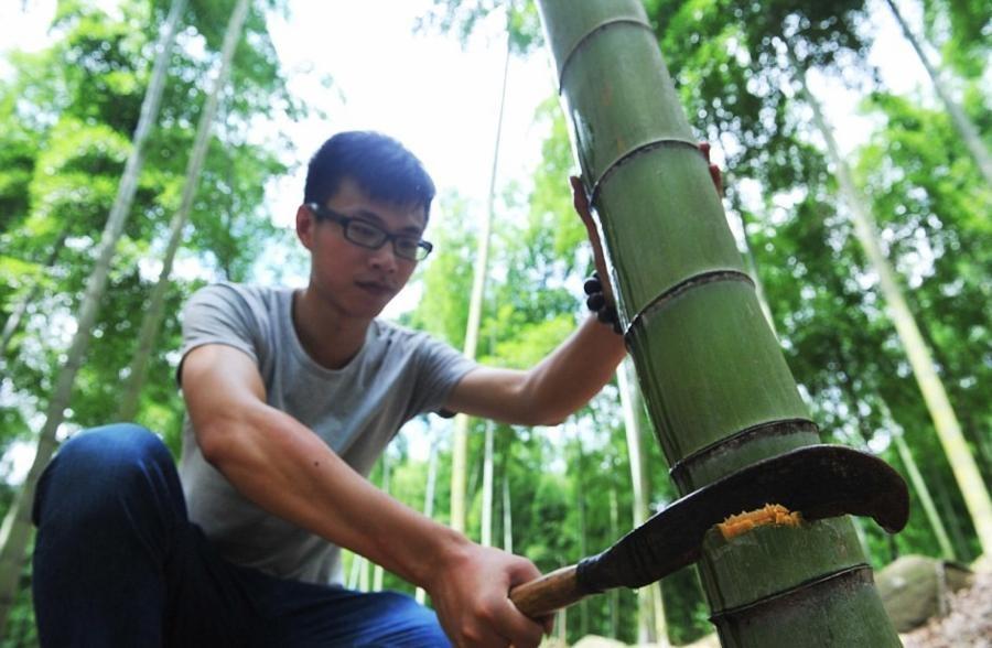 Kham pha ky thuat u ruou trong than tre cua Trung Quoc hinh anh 5 42_1542142545623.medium.jpg