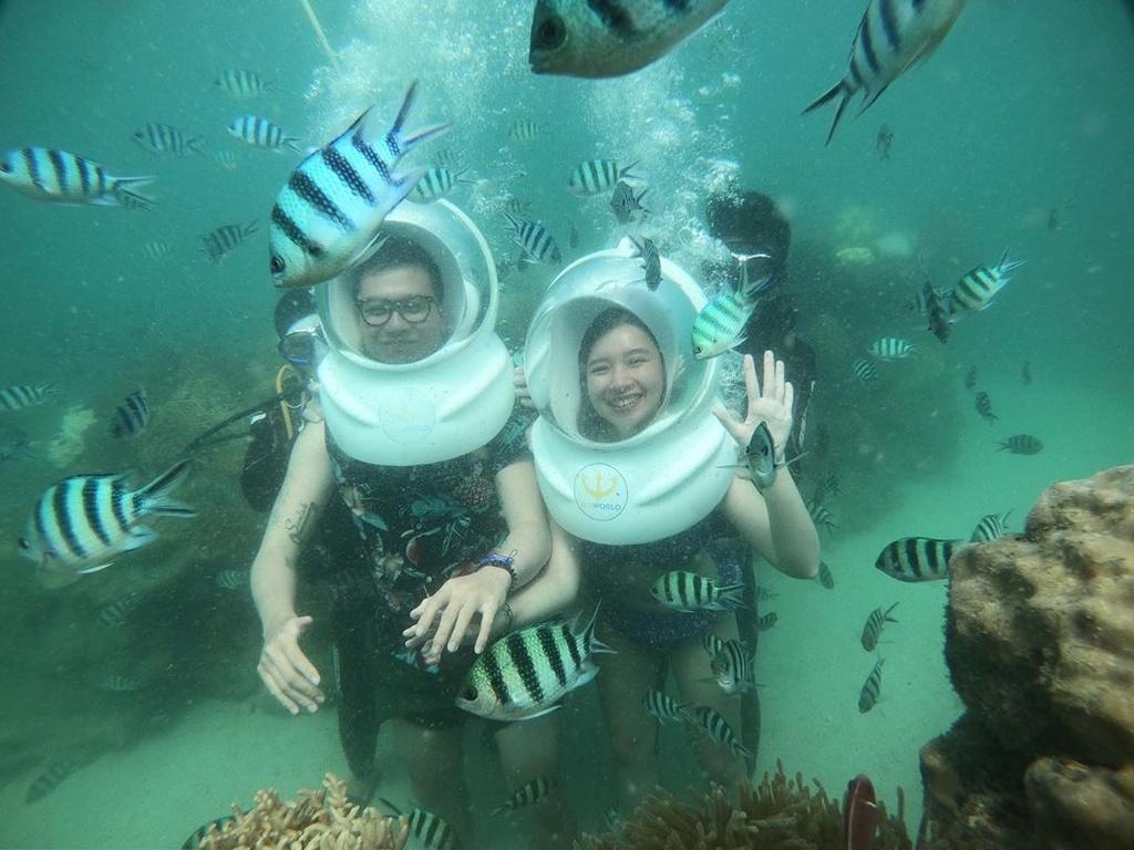 san ho o Phu Quoc anh 3  - 105936512_585635699041198_6349199801124776479_n - Trải nghiệm lặn biển ngắm san hô trên đảo ngọc Phú Quốc
