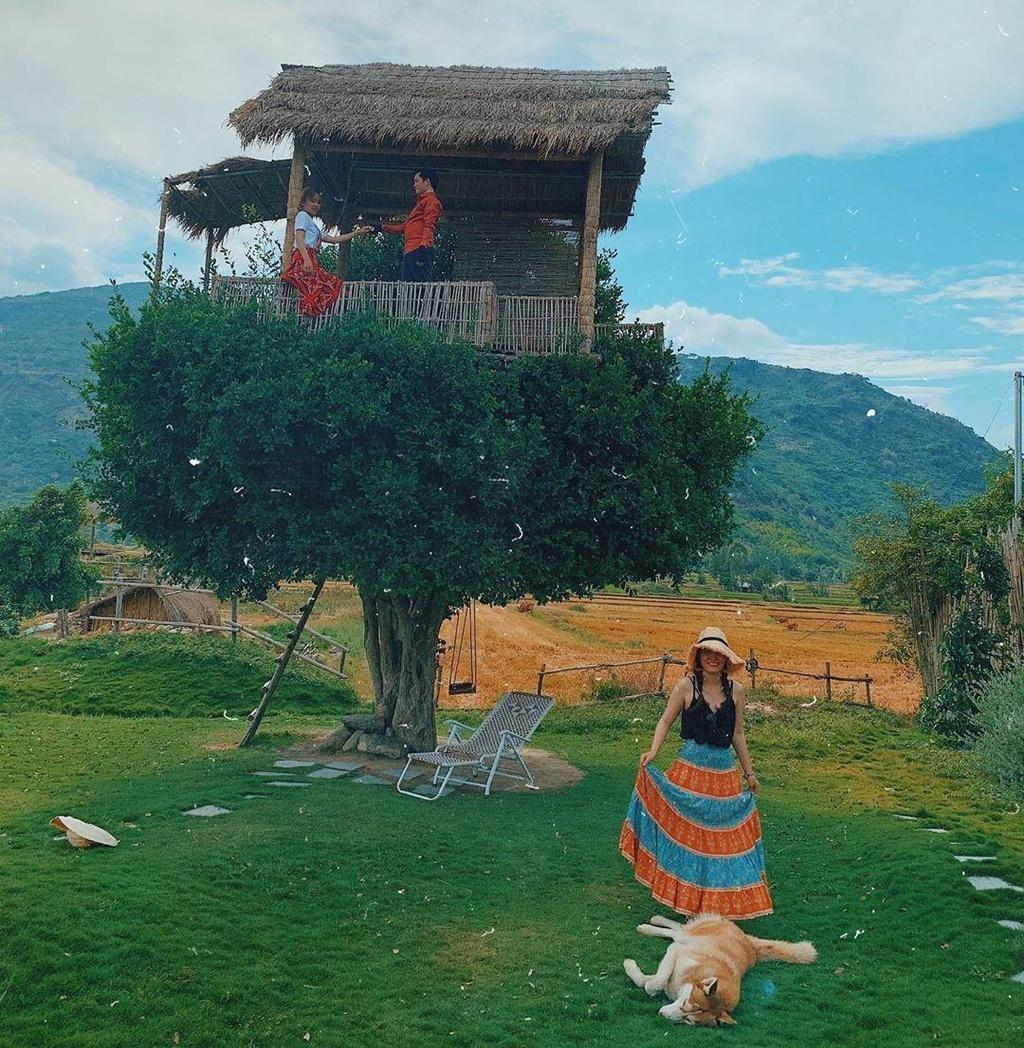 Ninh Thuan dep cuon hut voi cac diem check-in co xua va hien dai hinh anh 14