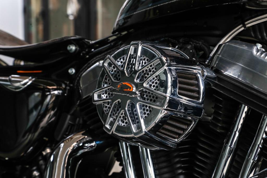 Harley-Davidson Sportster Forty-Eight do cua biker Sai Gon hinh anh 9