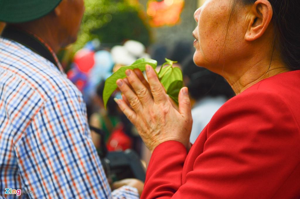 Hang nghin nguoi Da Nang den chua, cong vien du xuan hinh anh 5