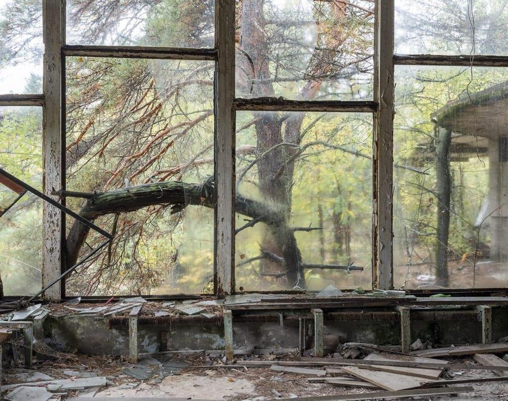 'Thanh pho ma' Pripyat hoang tan hon 30 nam sau tham hoa Chernobyl hinh anh 2