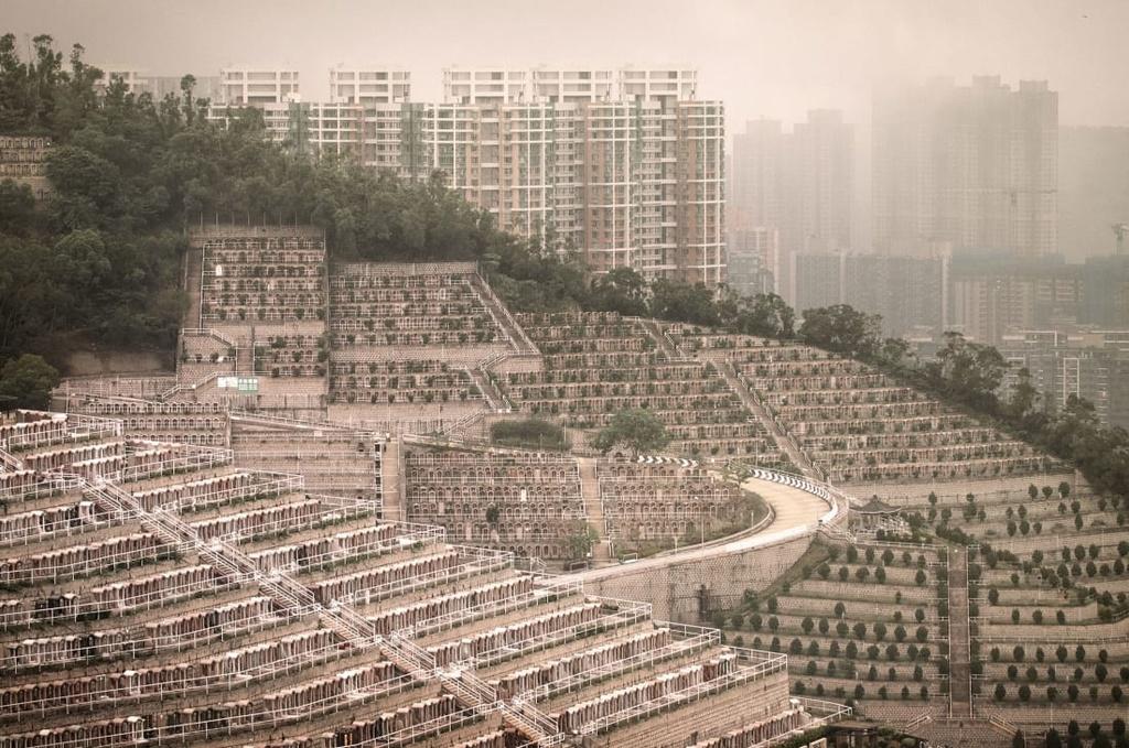 nghia trang Hong Kong anh 2