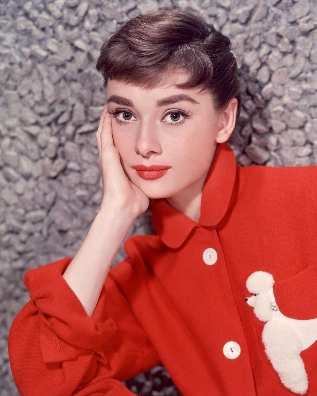 bieu tuong nhan sac Audrey Hepburn anh 1