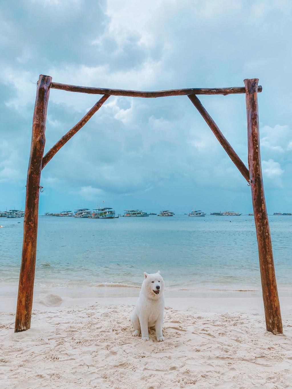 Phu Quoc anh 3  - 12 - Kinh nghiệm vi vu Phú Quốc cùng thú cưng