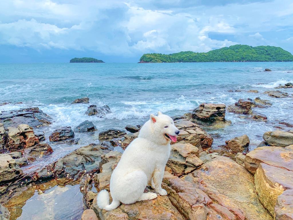 Phu Quoc anh 9  - IMG_5350 - Kinh nghiệm vi vu Phú Quốc cùng thú cưng
