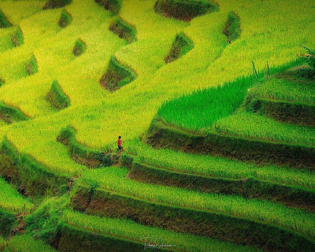 thung lung Viet anh 4