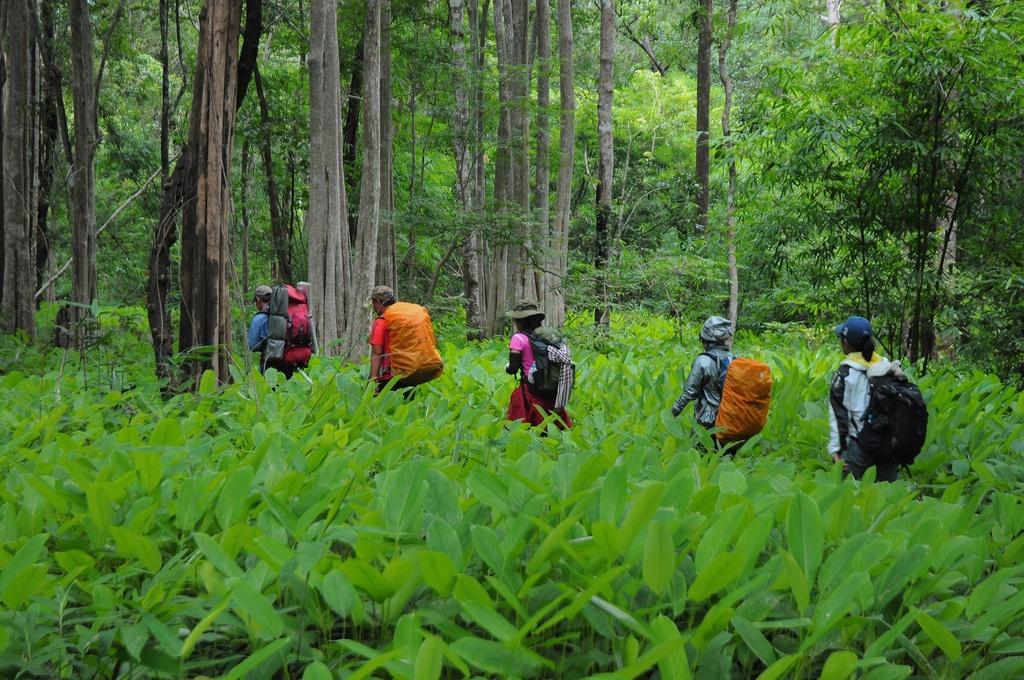 Đây là cung đường cho những ai đam mê trekking, tìm chốn bình yên, hòa mình với thiên nhiên.