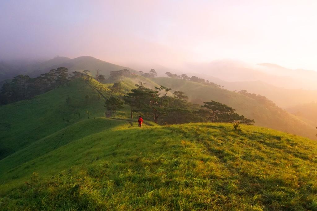 Khoảnh khắc đạo bước những tia nắng vàng đầu tiên rải đều trên những ngọn cỏ và từng làn sương mỏng bay lãng đãng bên sườn đồi như đưa vào thiên đường hạ giới.