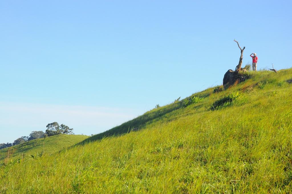 Cung Tà Năng - Phan Dũng, có thể trek lên 3 ngọn đồi cao để ngắm nhìn hoàng hôn, bình minh hay những con đường mòn đỏ chót của đất đỏ bazan như tấm vãi lụa uốn lượn nhấp nhô.