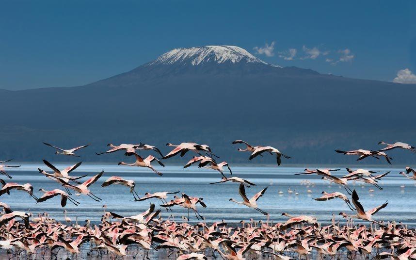"""1. Chạm vào tuyết của Kilimanjaro, Tanzania:  Tới năm 2011, hơn 85% lượng băng trên đỉnh """"Nóc nhà châu Phi"""" đã tan chảy, và phần còn lại cũng sẽ biến mất trong thập kỷ tới. Chinh phục ngọn núi cao nhất châu Phi không phải chuyện dễ, nhưng du khách sẽ sớm không còn được chiêm ngưỡng khung cảnh tuyết phủ độc đáo trên đỉnh Kilimanjaro."""
