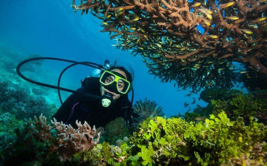 2. Lặn ở rạn san hô Great Barrier, Australia: Đây là cấu trúc sống lớn nhất thế giới, một thiên đường tuyệt diệu cho động vật biển, trải dài hơn 2.250 km ngoài khơi Australia. Theo kết quả nghiên cứu, lượng san hô ở Great Barrier đã giảm hơn 50% trong 3 thập kỷ qua. Với biến đổi khí hậu, bão tố và quyết định cho đổ bùn cát nạo vét gần đó của chính phủ, nhiều nhà khoa học dự đoán nơi này sẽ mất đi sự trù phú trong một khoảng thời gian không xa.